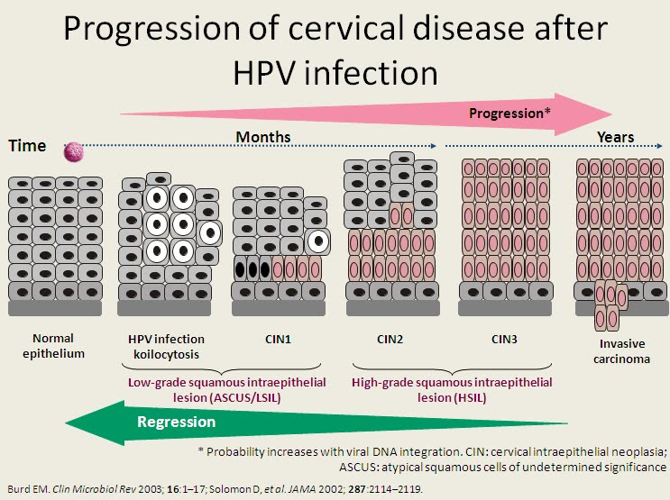 HPV: The Viral Link to Cancer forecast